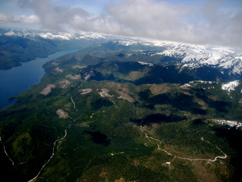 View from a floatplane of Misty Fjords National Park, Alaska