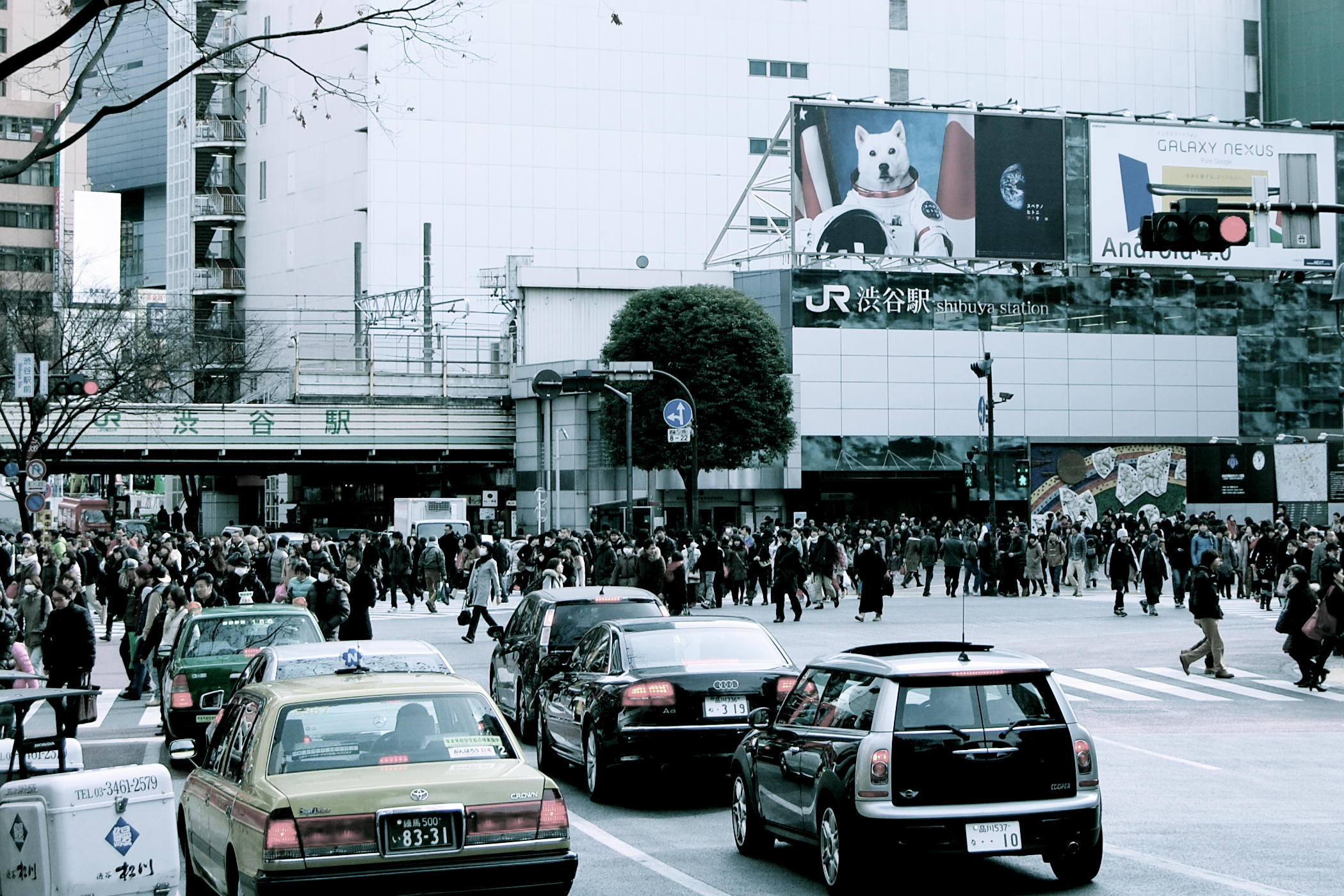 Traffic at Shibuya Crossing