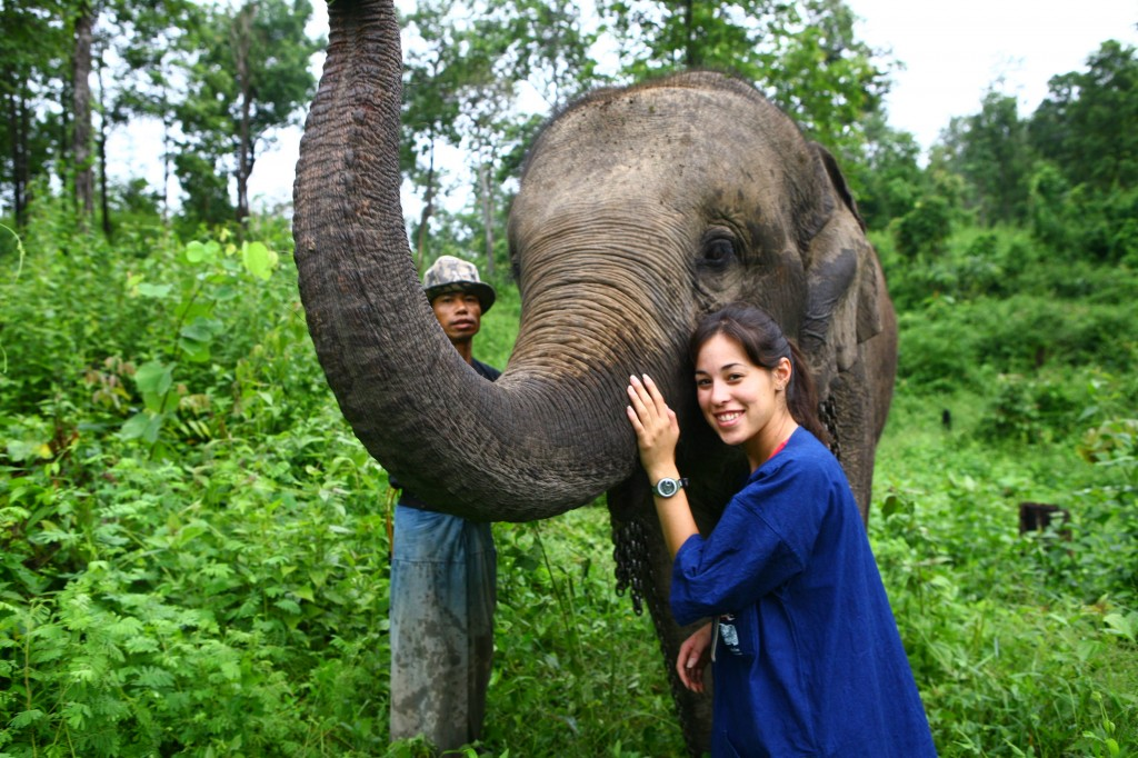 Elephant mahout training camp in Lampang, Thailand