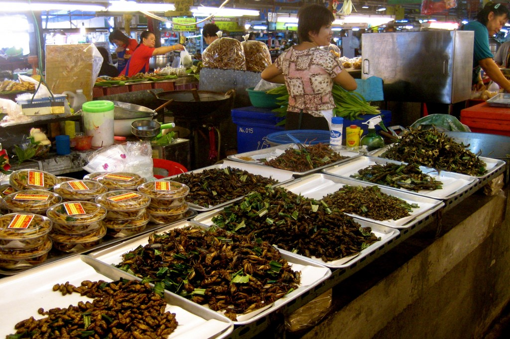 Cooked insects at market in Chiang Mai, Thailand