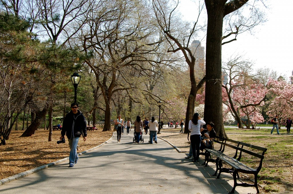 People walking in Central Park in NYC