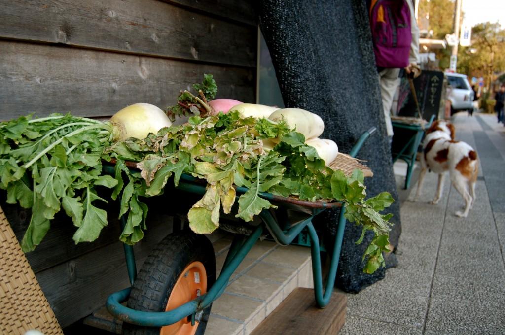 Wheelbarrow in Kamakura, Japan