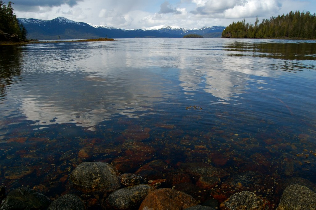 Checats Cove, Misty Fjords National Monument, Alaska