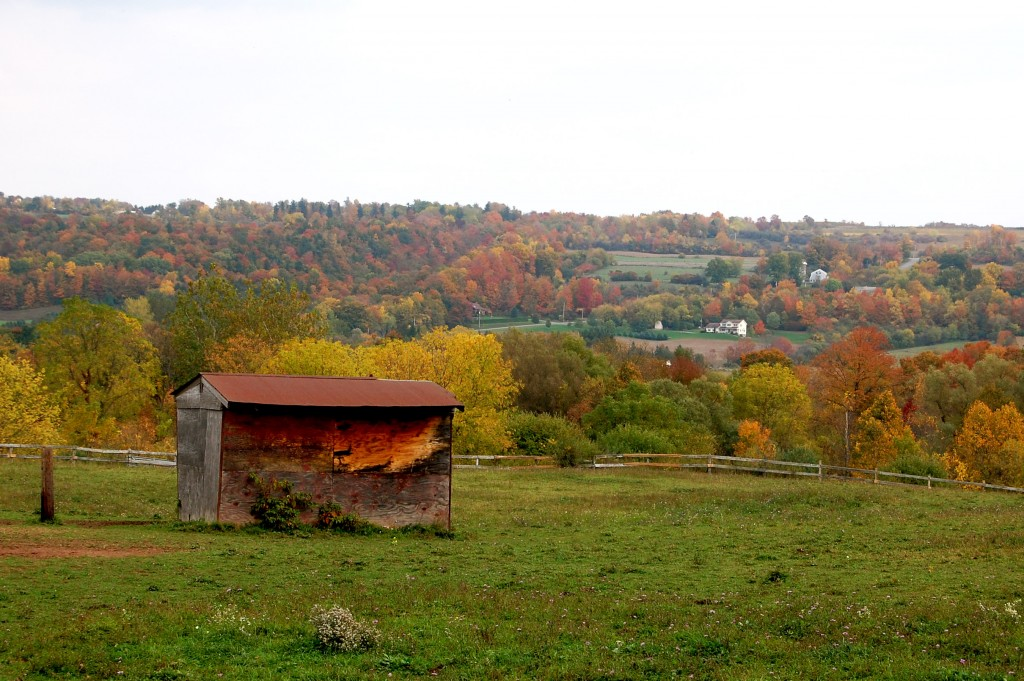 Barn in Central New York in fall