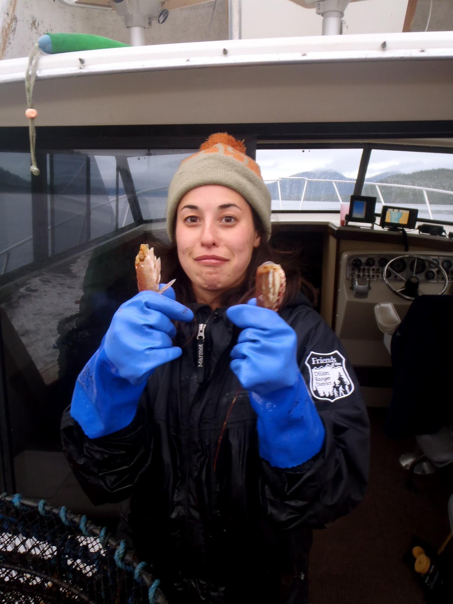 Ripping shrimp apart in Alaska