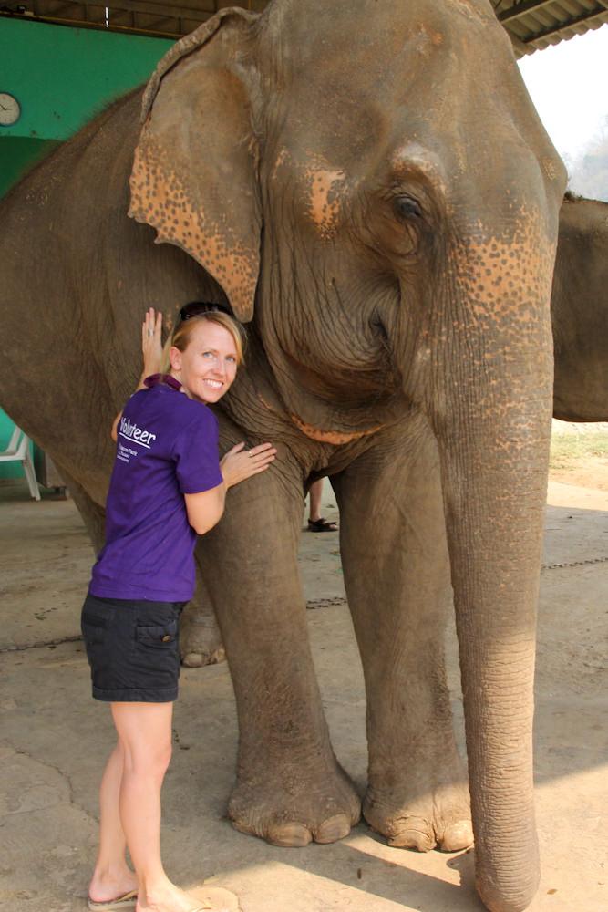 Angela Jacobus - Elephant Nature Park
