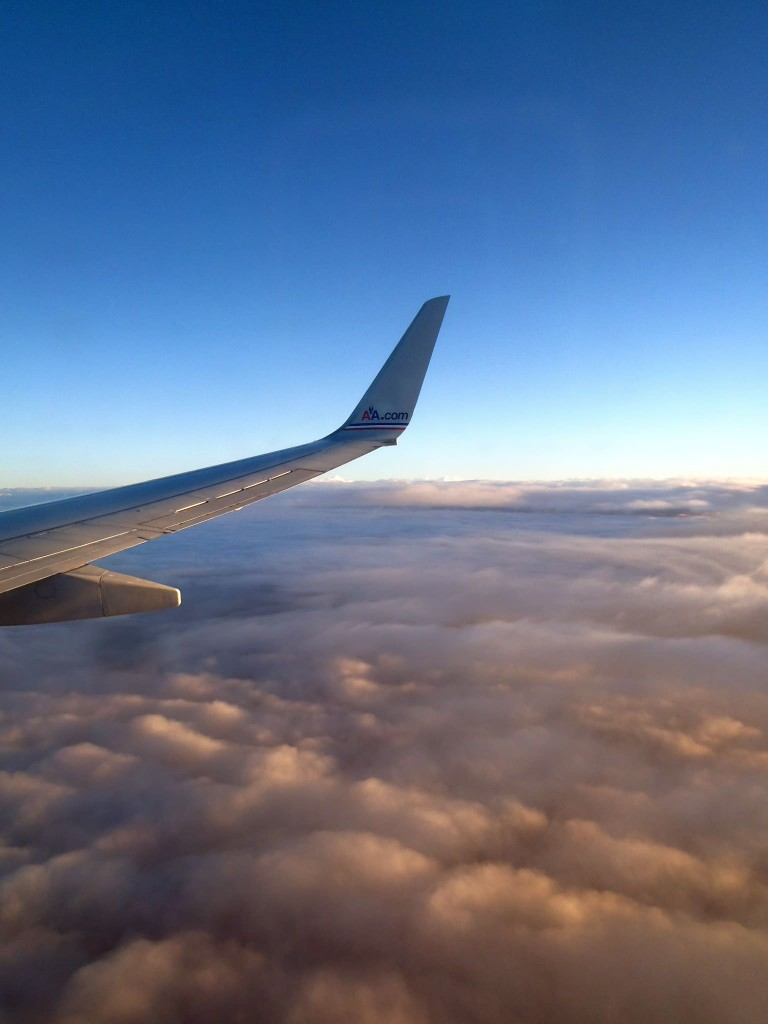 View of American Airlines plane wing