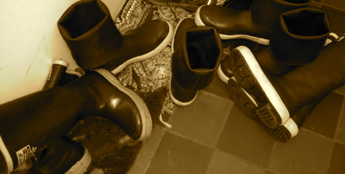 Ketchikan sneakers.