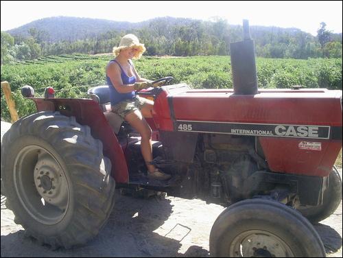 Eilidh on tomato farm in Australia