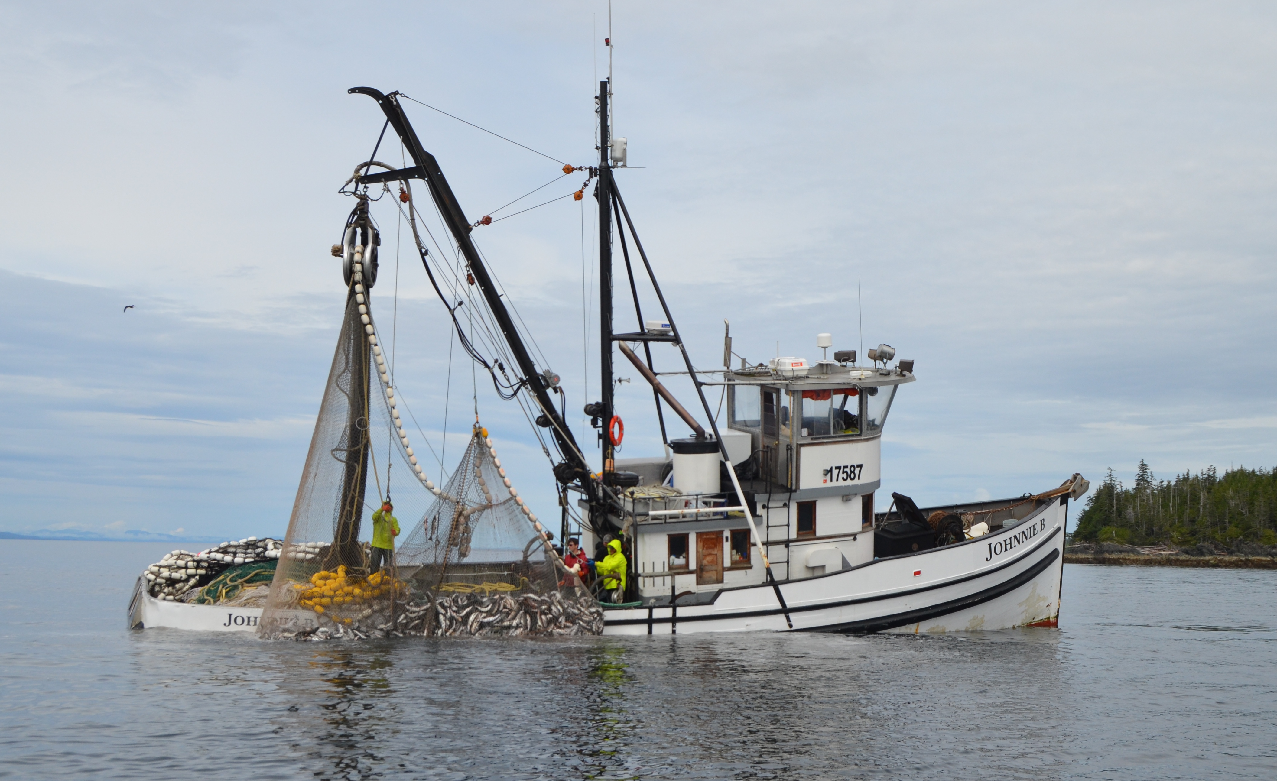 Image gallery salmon seiners for Commercial fishing jobs