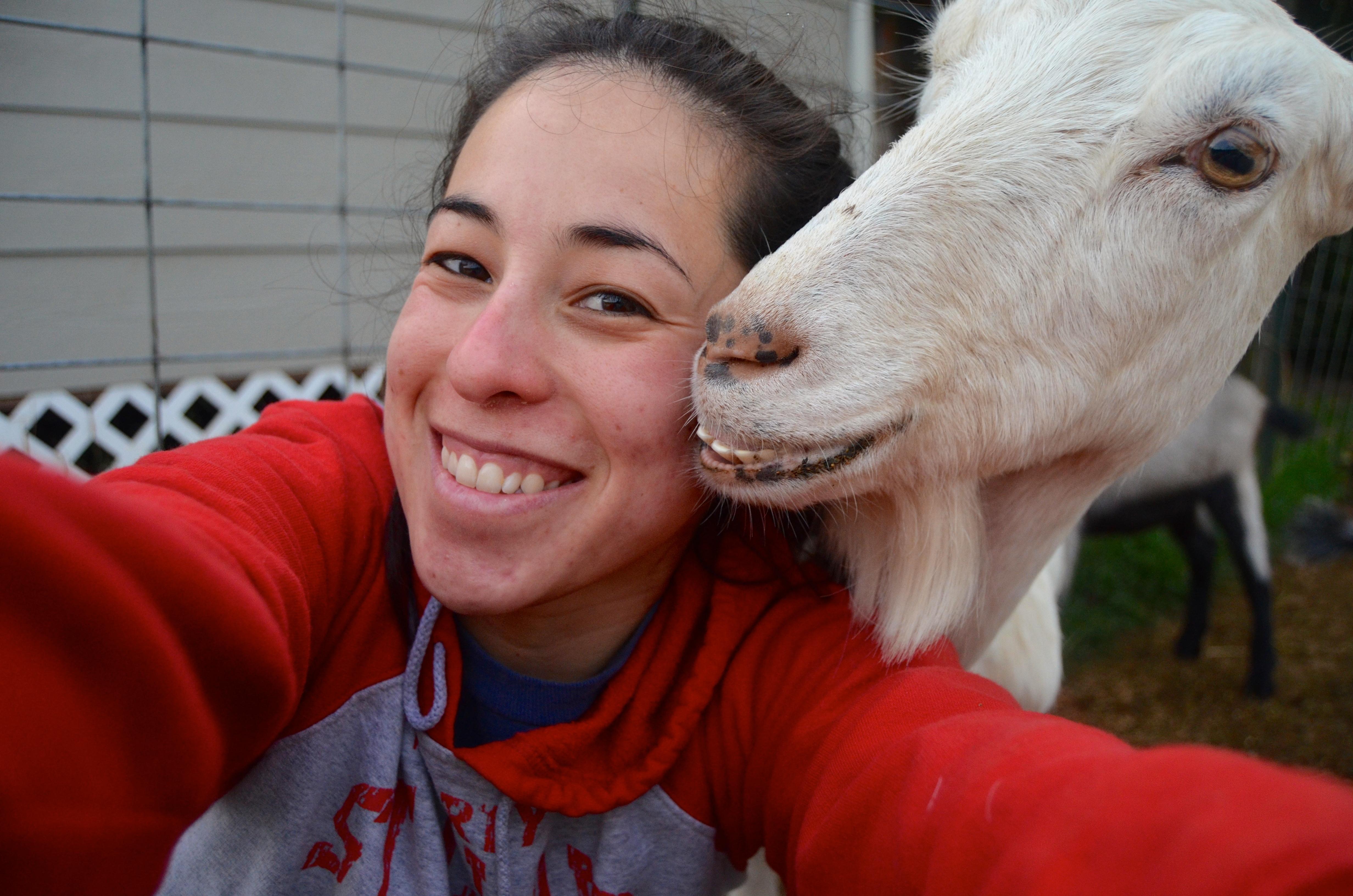 #GoatSelfie